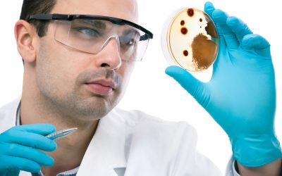 Do You Need Household Microbial Testing?
