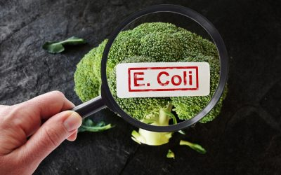 What to Do When Faced With Food Recalls