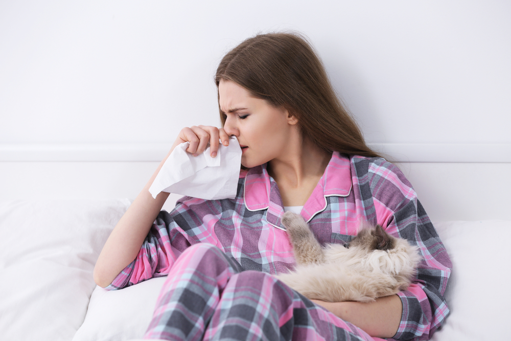 7 Common Allergens That Are Found In Homes